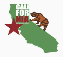 Cali Bear and Map by daleos
