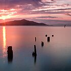 Sausalito Old Pier, San Francisco by Chris Frost Photography