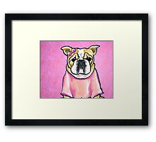 Pink Bow Bulldog Framed Print