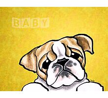 Baby Bulldog Yellow Photographic Print