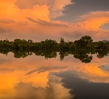 Wings Of Glory - Sawhill Ponds Sunset by Greg Summers