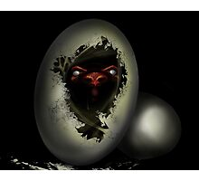 Born Angry Photographic Print