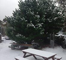 Winter Wonderland by SimplyRed