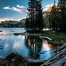 Outlet at Tenaya Lake by Cat Connor