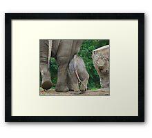 ... Want een Olifant gaat door ... (Colonel Hathi Elephant March) Framed Print
