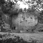 Granville Lodge Furnaces Ruins. by Lawson Clout