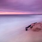 Monterey Beach Sunset by Chris Frost Photography