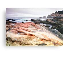 Point Lobos State Park Metal Print