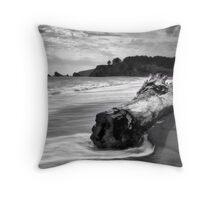 Navarro Beach State Park Throw Pillow