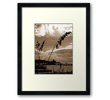 Fort Myers Beach Framed Print