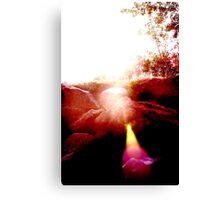 Light and Lens Canvas Print
