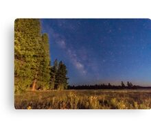Milky Way - Lassen County Canvas Print