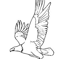 Bald Eagle Drawing by kwg2200