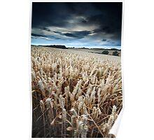 Harvest Whisper Poster
