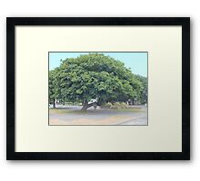 Helping hand. Framed Print