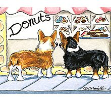Corgis at the Donut Shop Photographic Print