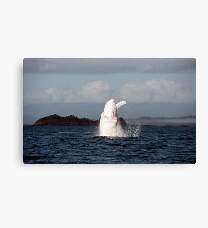 The Big White Whale Canvas Print