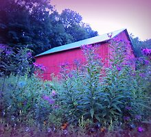 Red Barn and Iron Weed at Dusk by TrendleEllwood
