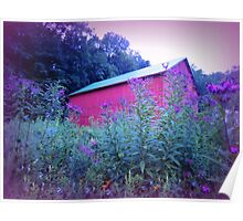 Red Barn and Iron Weed at Dusk Poster