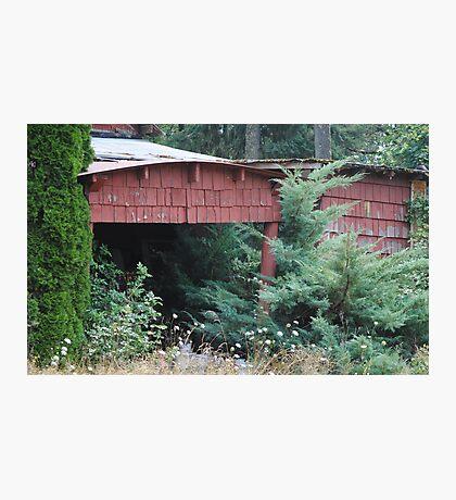 Lost Garage Photographic Print