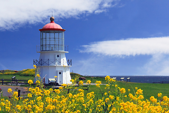 Springtime Lighthouse by James Eddy