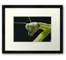 Why HELLO!! Framed Print
