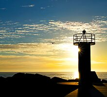 Beacon of Light - Gold Coast Qld Australia by Beth  Wode