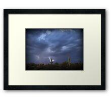 Striking Sonoran Desert Framed Print