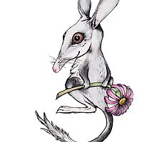 Little Bilby by TwoShoes