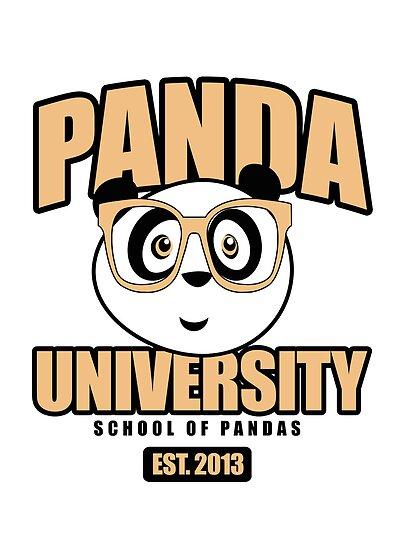 Panda University - Yellow by Adamzworld