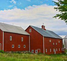 Red Barn In Charlotte by Deborah  Benoit