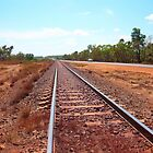 Rail line from Darwin ti Alice Springs by waxyfrog