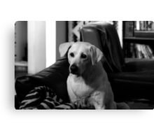 The Puppy Inside Canvas Print