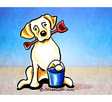 Yellow Lab Puppy Beachside Photographic Print