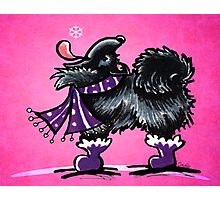 Black Pomeranian Fun with Snow Magenta Photographic Print
