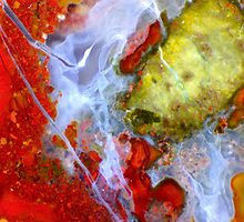 Under Indonesia (Plume Agate) by Stephanie Bateman-Graham
