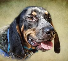 Blue Tick Baby by vigor