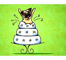 Pug Cake Trick Green Photographic Print