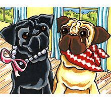 City Pug and Country Pug Summer Social Photographic Print
