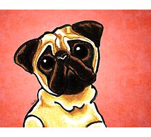 Fawn Pug Listen Up Red Photographic Print