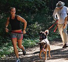 The 5k Dog Run by vigor