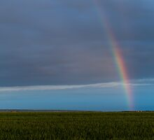 Late afternoon rainbow by Alexander Chesham