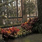 Conservatory at Longwood Gardens by MsKimberly