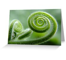 Spin... Greeting Card