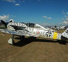 FW-190,Toogoolwah,Queensland,Australia by muz2142