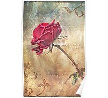 Musical Rose Poster