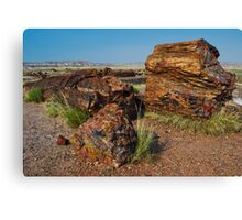 Petrified Forest National Park Canvas Print