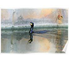 Cormorant Swim Poster