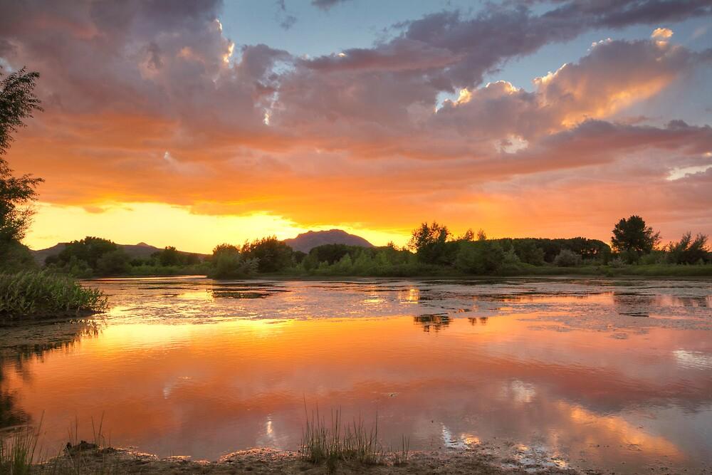 Sunset Surround 2 by Bob Larson