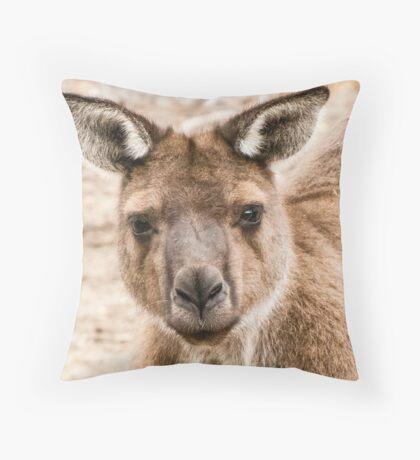 Kangaroo Island Grey Kangaroo Throw Pillow